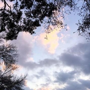 sunsetforblog7-10