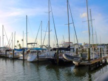 dunedinboats2