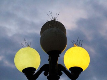 924lights