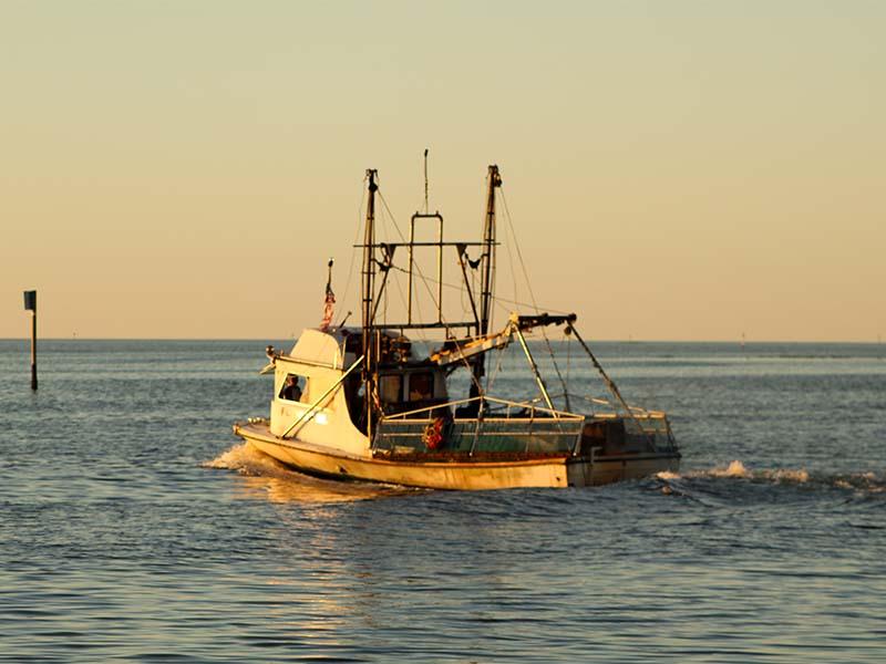 1031fishingboat1