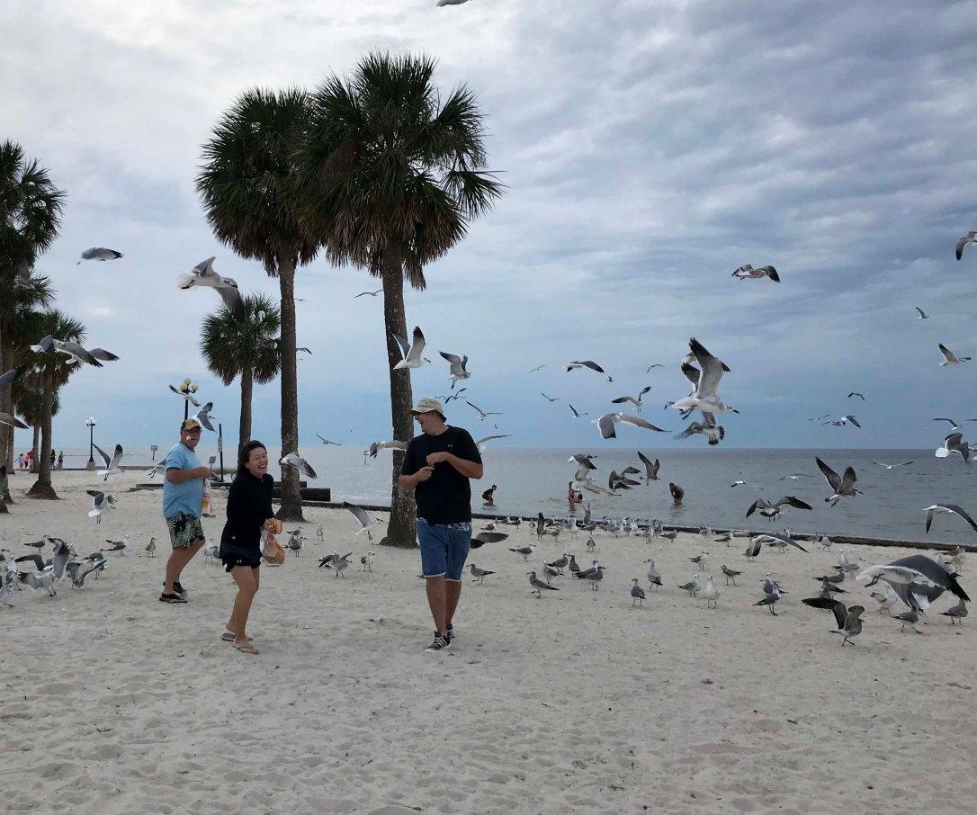 1122feedingthebirds2
