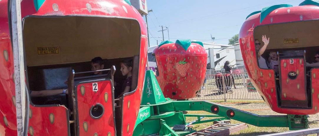 strawberryfeature
