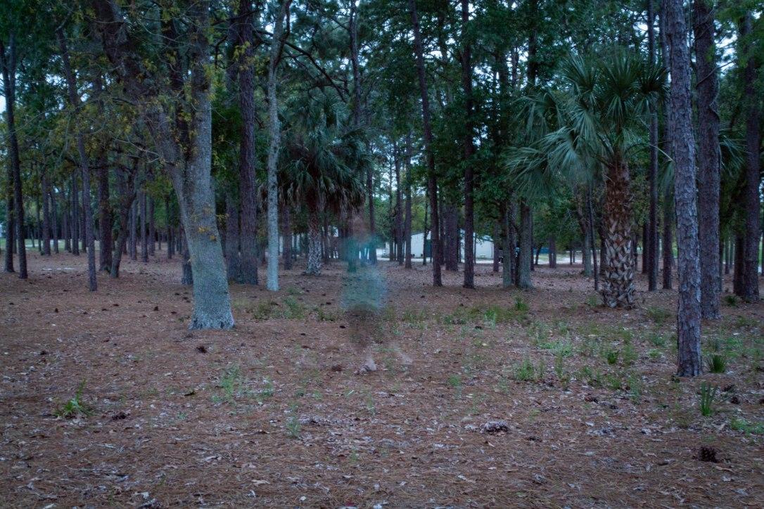 03-12-ghostlycarolyn