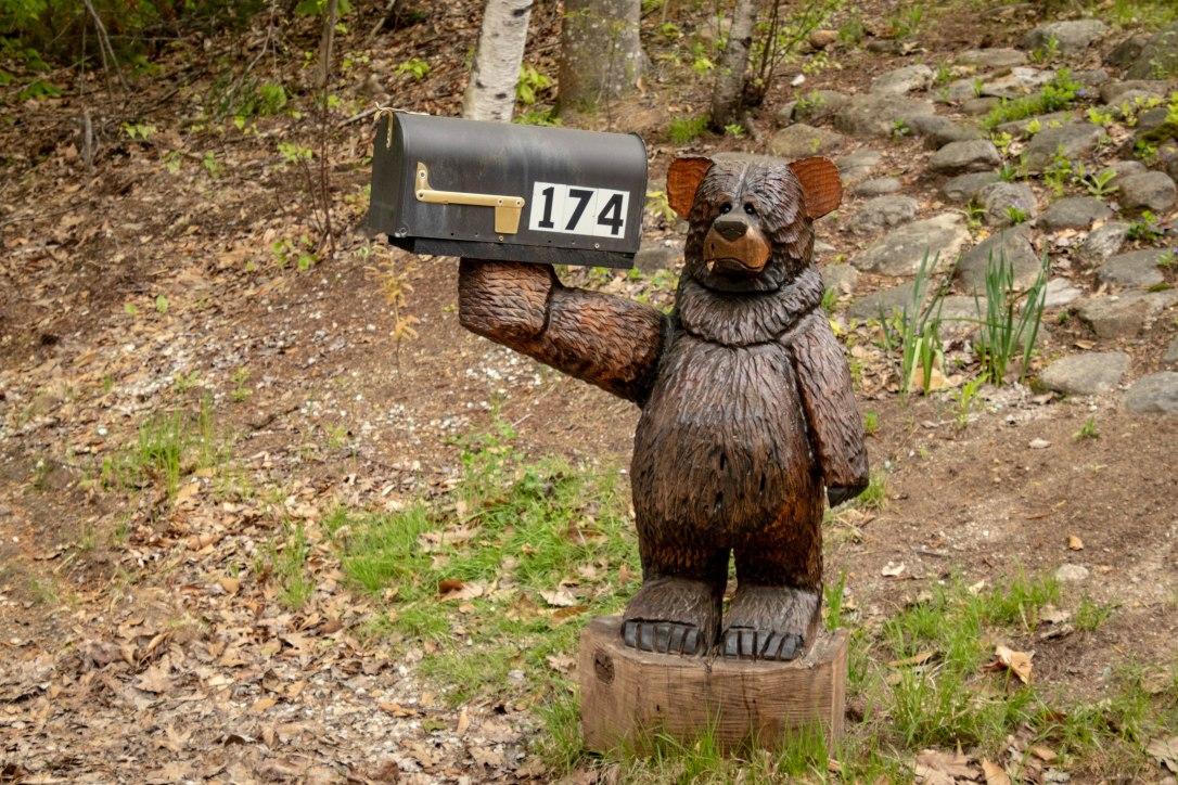 05-24-19babybear