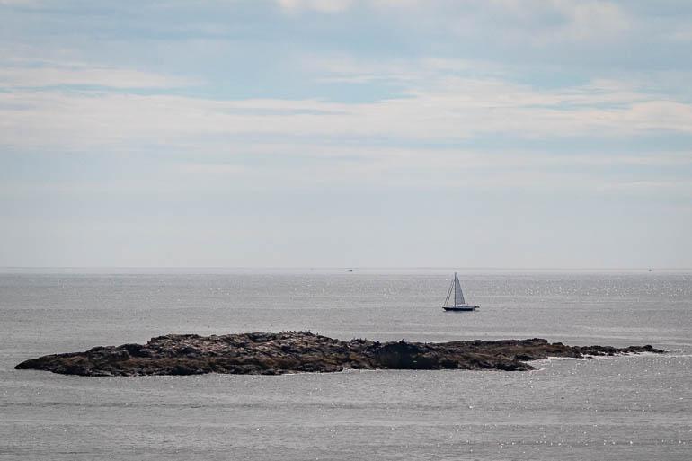 Acadia7