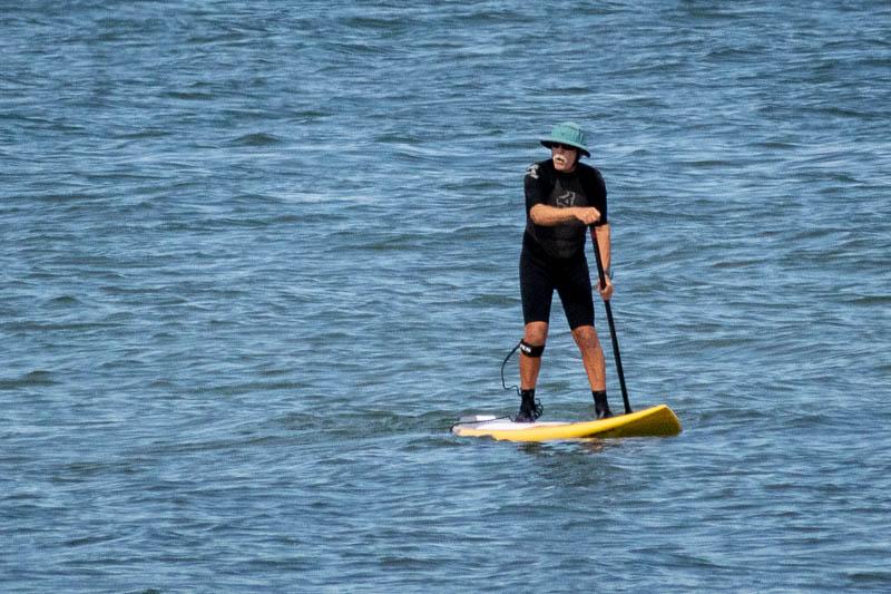 Perkinspaddleboarder