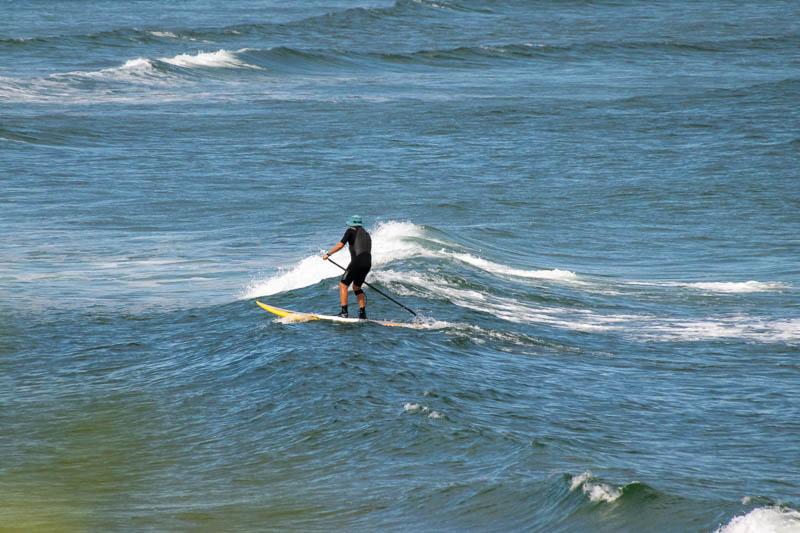 Perkinspaddleboarder2