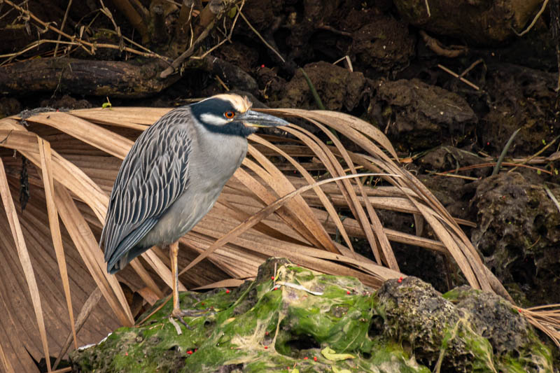 12-22betty'sheron