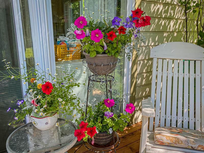 08-15-20flowers2